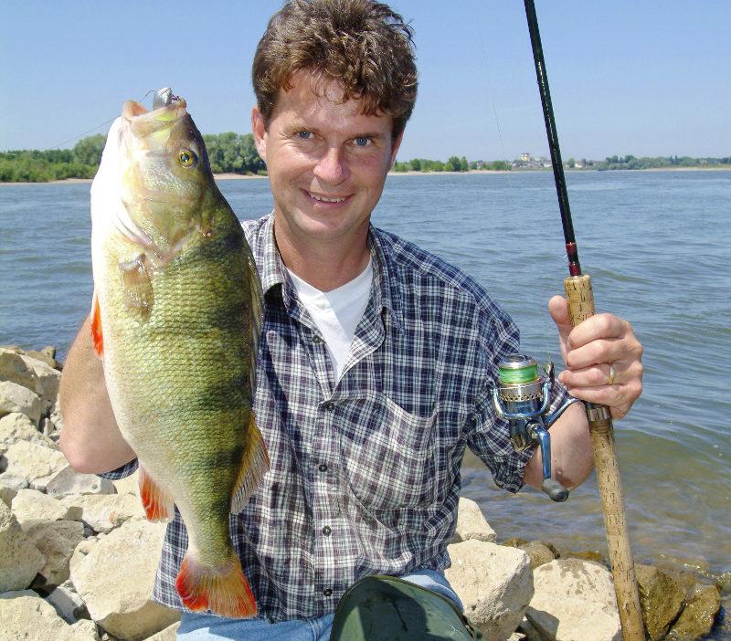 Im hochsommer auf barsch fisch und fang for Fisch barsch