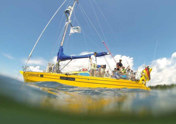 Das Forschungsschiff Aldebaran ermöglicht ungewohnte Perspektiven. Foto: ALDEBARAN Marine Research & Broadcast