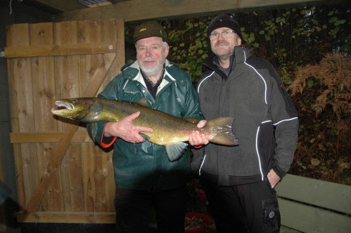 Lachsvater Hartwig Hahn (links) und LSFV-Präsident Peter Heldt mit einem stattlichen Lachs-Milchner aus der Stör. Bilder: Rother/LSFV SH