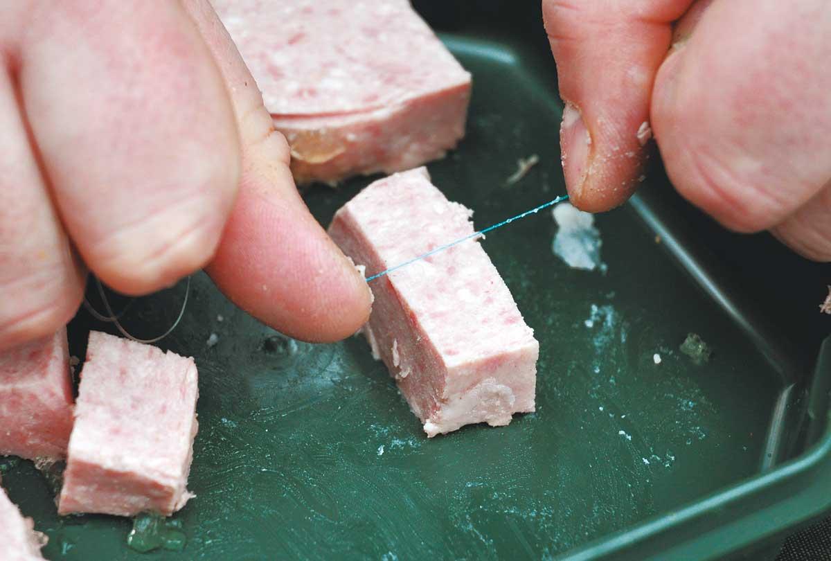 Messer vergessen? Auch mit einem Stück Monofil lässt sich das Frühstücksfleisch in maulgerechte Happen schneiden.