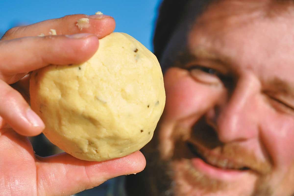 Mit einem kirschgroßen Knubbel Käsepaste am 6er Haken dürfte nichts schief gehen.