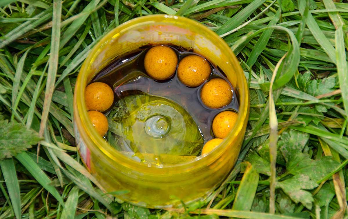 Boilies in Gelee-Dip: Je länger die Köder eingelegt werden, desto länger geben sie ihr Lock-Aroma ab.