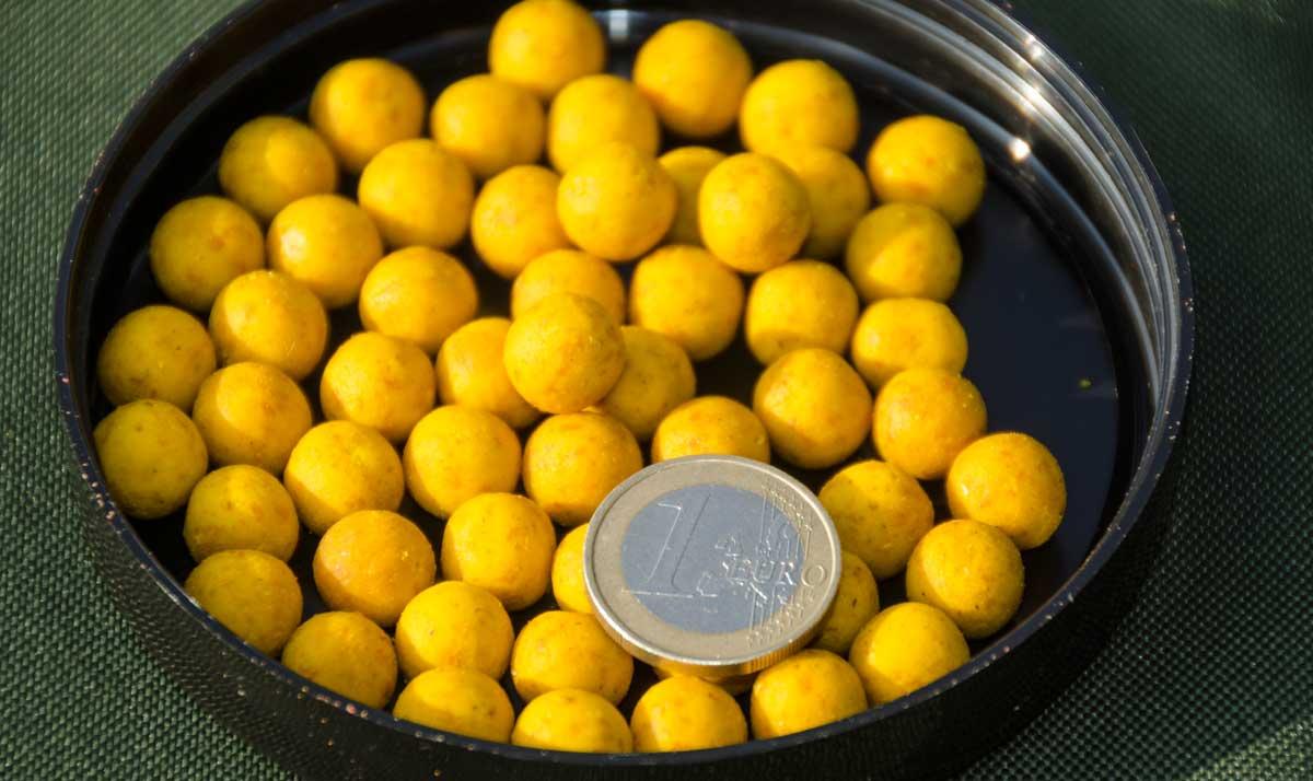 Im Vergleich zum Euro wirken die Boilies winzig. Solche Mini-Kugeln haben nur wenige Karpfen bislang gesehen.