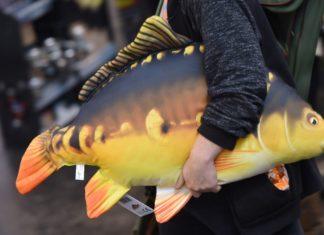 In Friedrichshafen am Bodensee dreht sich an den Messetagen alles um das Thema Fisch.
