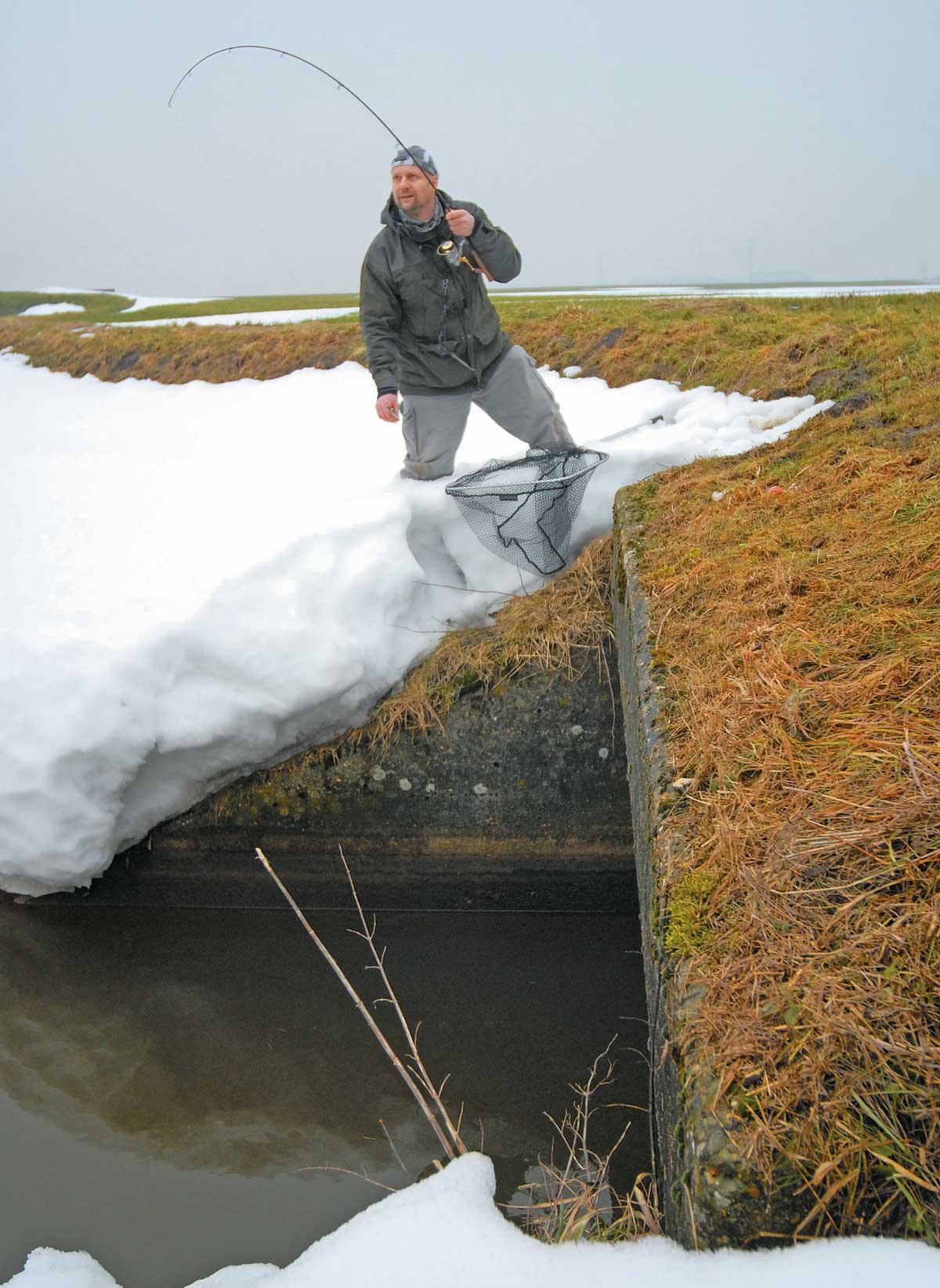 Auch an Brücken, unter denen der Boden meist härter und das Wasser tiefer ist, steht die Vertikalrute öfter krumm.