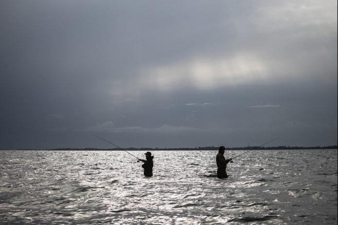 Ob Dorsch oder Wolfsbarsch. Angler werden immer mehr durch die EU reguliert, aber nicht gleichberechtigt an den Entscheidungsprozessen beteiligt. Foto: Olaf Lindner, DAFV