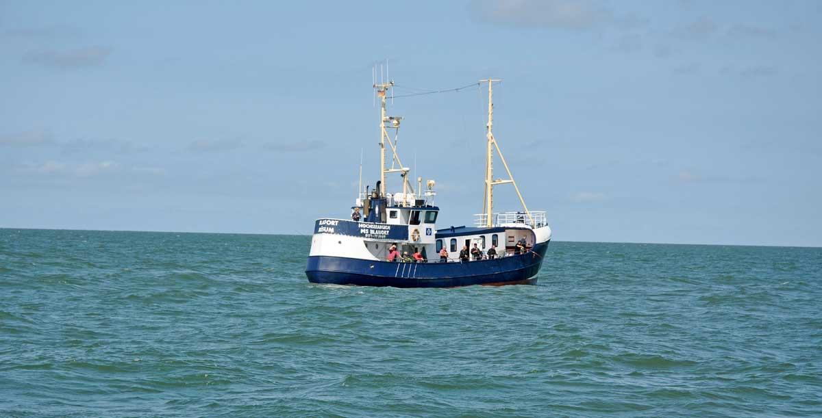 """Fanggründe erreicht: Auch die """"Blauort"""" fährt im Sommer regelmäßig zum Makrelenangeln hinaus."""
