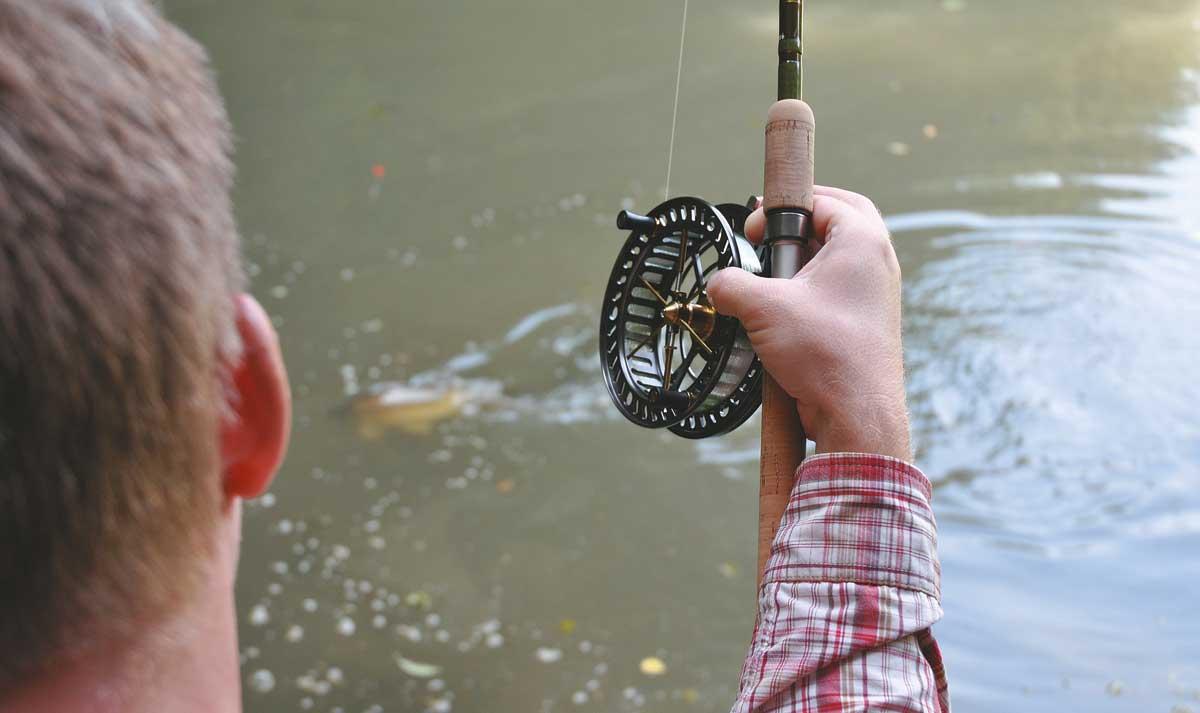 angeln so geht s vom einsteiger bis zum profi