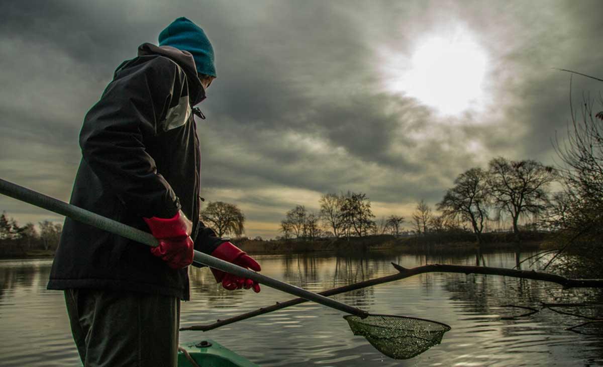 Versunkene Bäume und Äste sind der ideale Lebensraum für Fische und Kleintiere. Foto: Anja Gruner