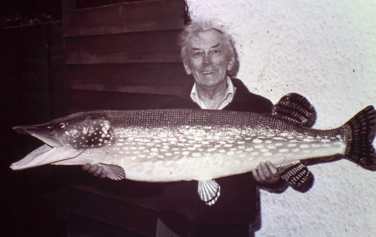 Peter Stone mit dem 25-Kilo-Hecht von Lothar Louis, den er neu präpariert hat.