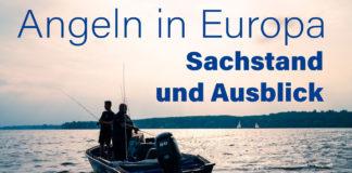 Ein aktueller Entschluss des Europäischen Parlaments eröffnet Einblicke in den Sachstand und die Zukunft der Freizetfischerei in Europa. Foto: Johannes Arlt/DAFV