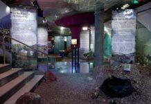 """Die neue Dauerausstellung """"Wasserwelten – Fischgeschichten"""" im Münchener Jagd- und Fischereimuseum. Bild: team 6"""
