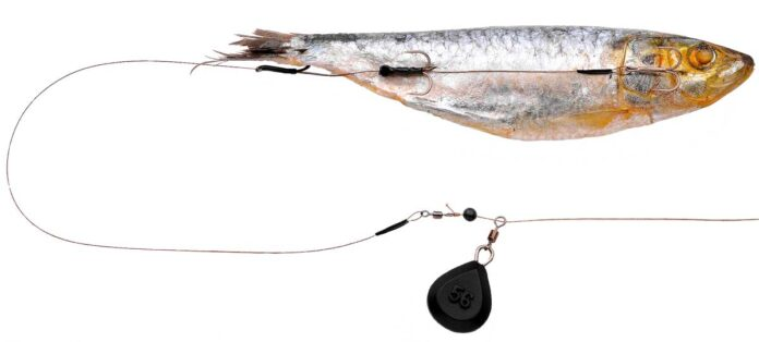 Spro Dead Bait Ready to go Bottom Rig