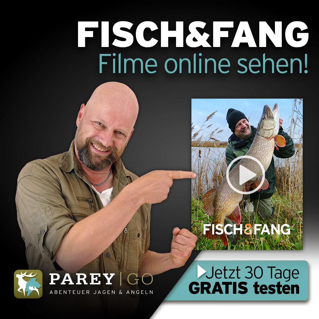 Fisch Filme