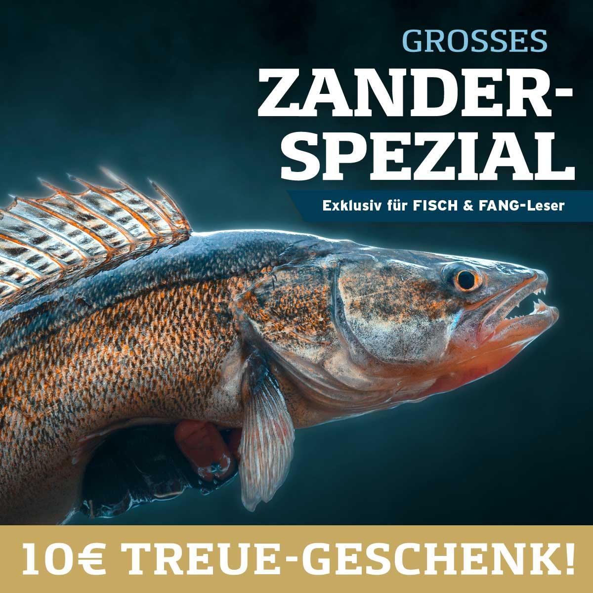 Zander-Spezial