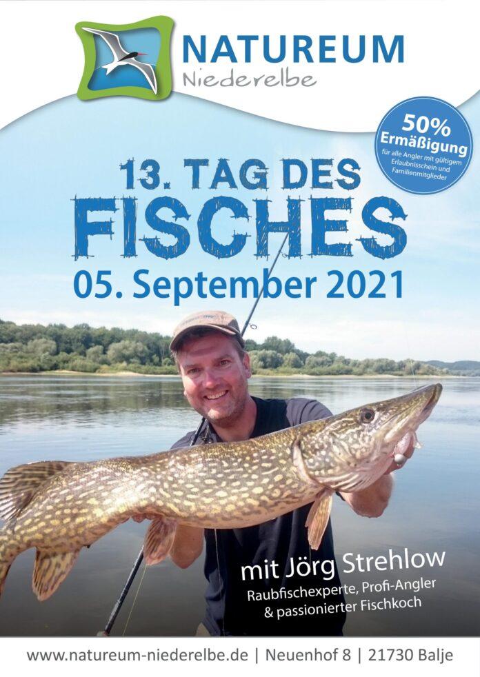 13. Tag des Fisches